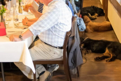 Restaurantbesuch. Hürdenlauf für die Bedienung und entspannte Hunde.